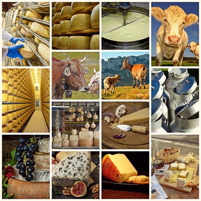 Schweizer Käse – die 5 besten Sorten
